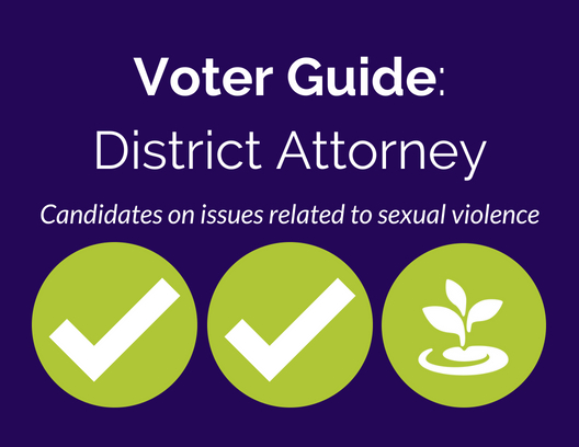 Three green circles, two with checkmarks, one with BARCC sprout, on purple background with white text: Voter Guide: District Attorney, Candidates on issue related to sexual violence